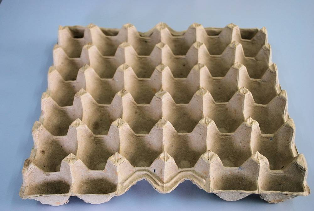 AA-30 pulp paper egg tray