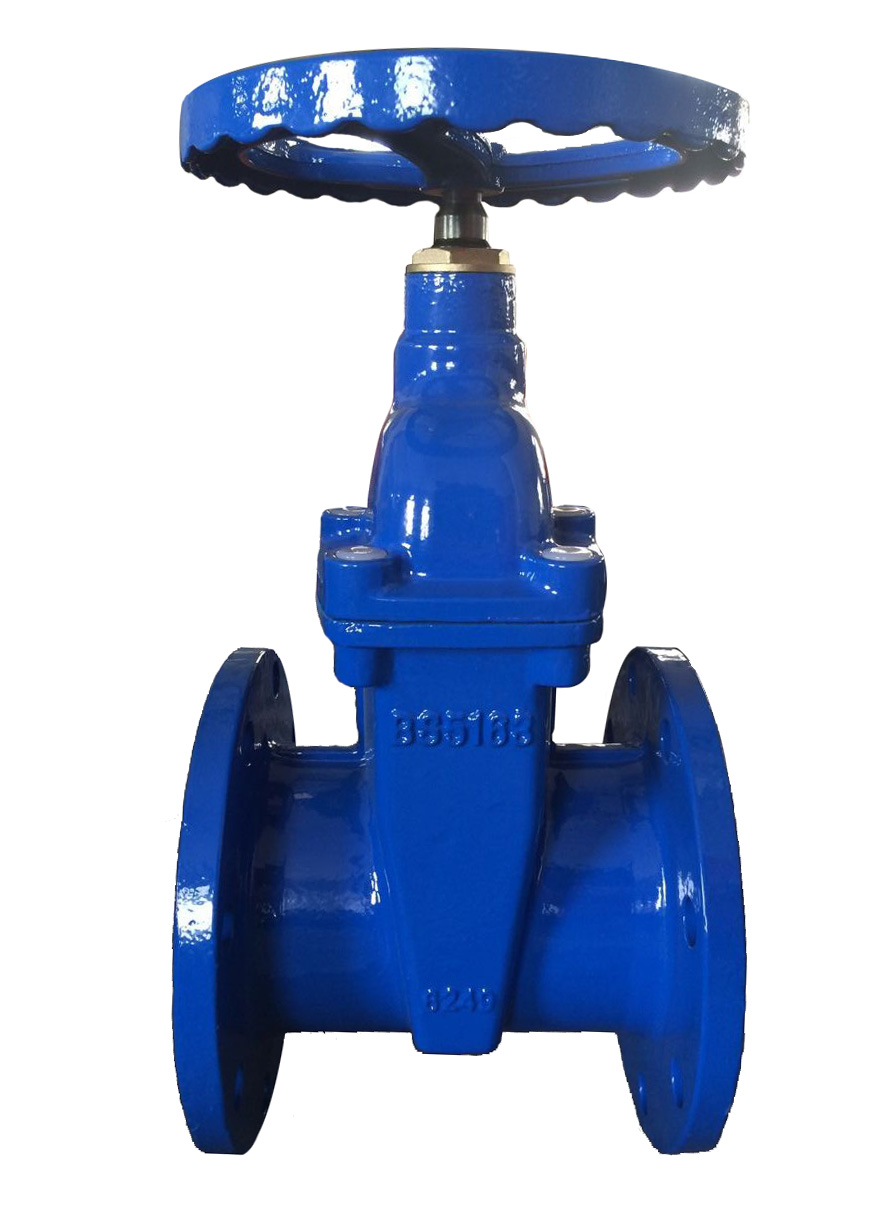 BS5163 Non-Rising Stem Resilient Seatd Gate valve