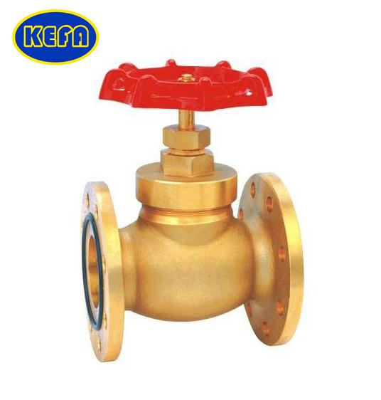 BS Globe valve