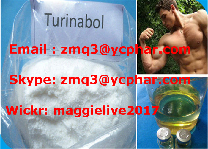 99%+ High Purity Oral Turinabol/Tbol (CAS#: 2446-23-3) 4-Chlorodehydromethyltestosterone