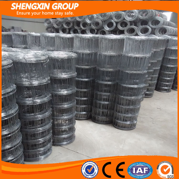 Hot sale for high quality galvanized wire mesh fence for sheep