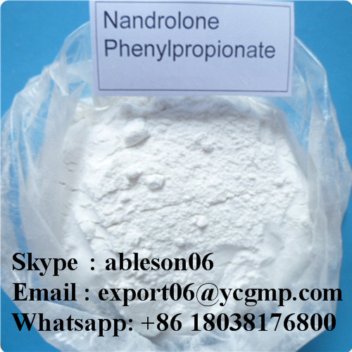 Muscle Building Raw Steroid Powder Nandrolone Phenylpropionate