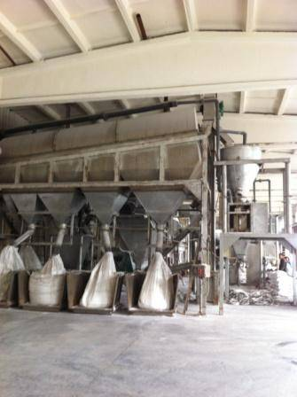 Salt Classifier