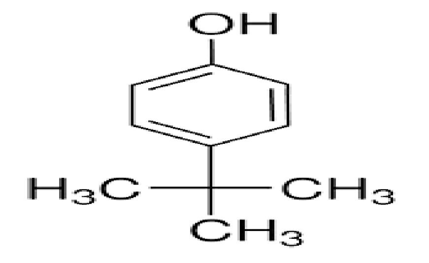 Para Tertiary Butyl Phenol (PTBP)