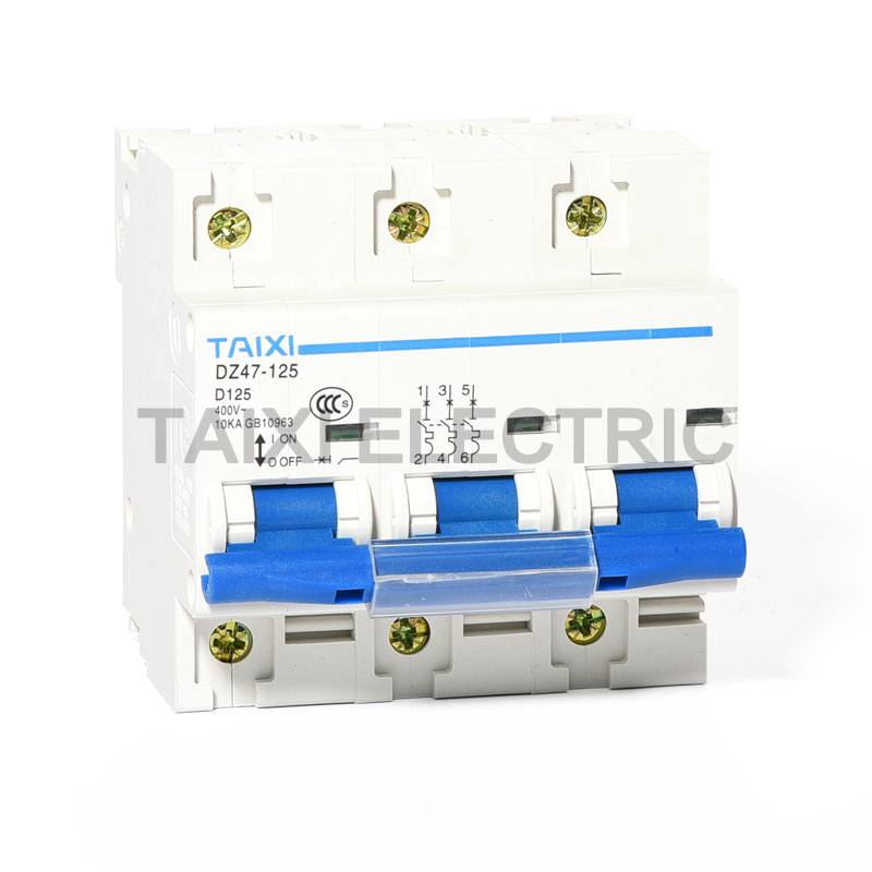 DZ47-125 Miniature Circuit Breaker