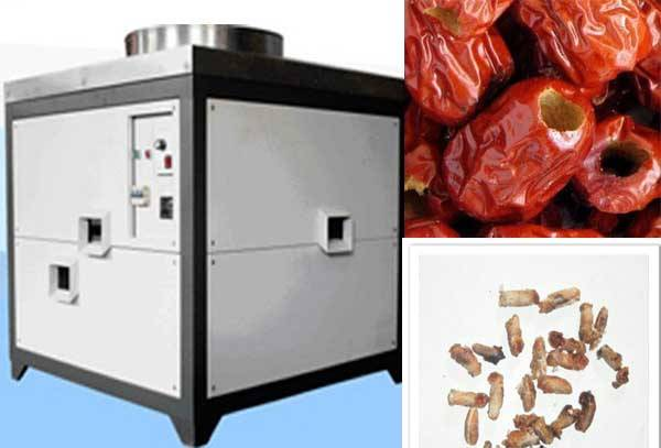 Fruit Process Jujube and Date Pit Machine