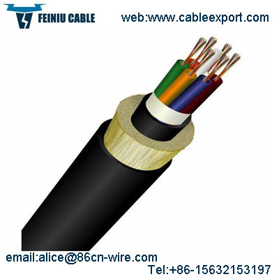 Fiber Optic Cable Factory Price Outdoor Cable Manufacturer