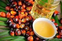 refined palm olein
