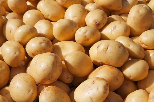 Grade A Potatoes