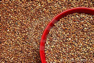 roasted buckwheat