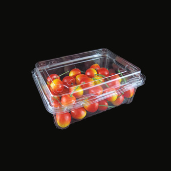 Disposable food grade fruit blister packaging tray plastic clamshell high quality sell well containe
