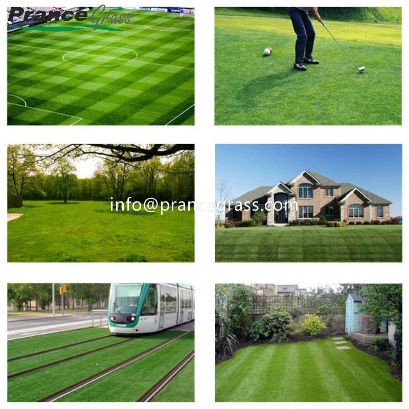 Largest Manufacturer Outdoor Artificial Grass Carpet for Home