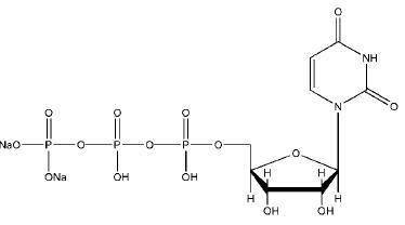 Uridine triphosphoric acid trisodium salt CAS 19817-92-6