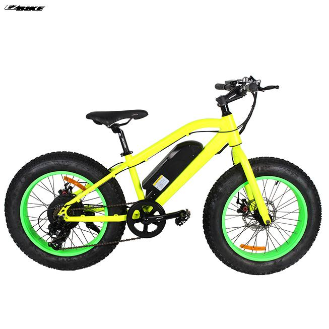 Electric Bike TDE19