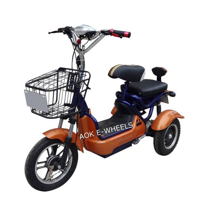 500W48V Passager Electric Tricycle with Basket (TC-013)
