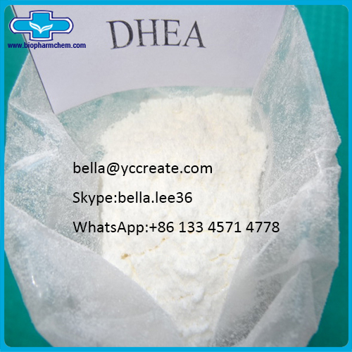 Bodybuilding Supplements Dehydroepiandrosterone DHEA