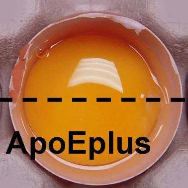 apocarotenoic acid ethyl ester (Feed Grade)