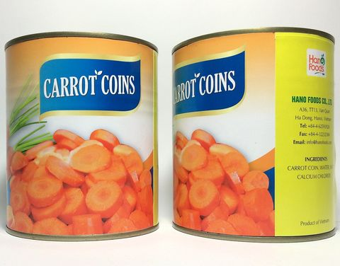 Premium Quality Fresh Carrot Coins