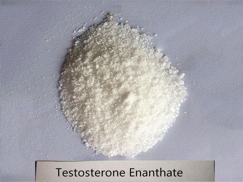Cheapest Steroids Testosterone Enanthate Powder //Test ent //Testosterone enth//test e raw powder
