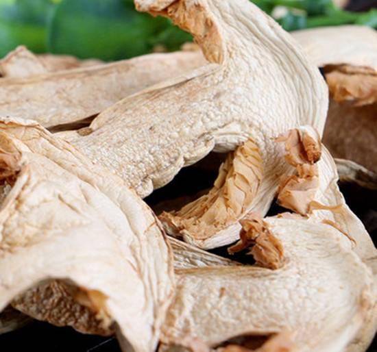 Tricholoma matsutake wild pure natural mushroom