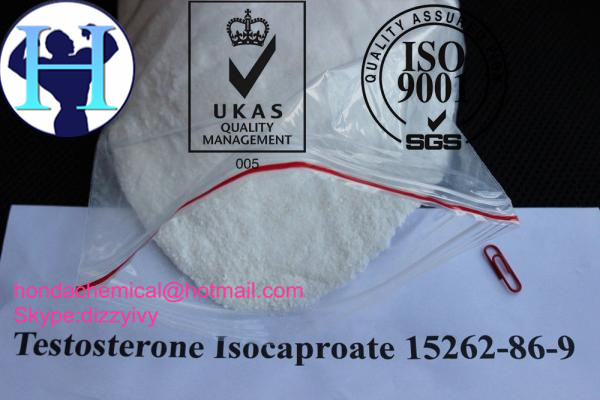99% purity Testosterone Isocaproate Steroid Powder Raw Testosterone Isocaproate for Bodybuilding