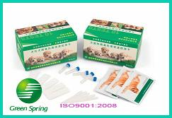Canine distemper virus antigen rapid test card