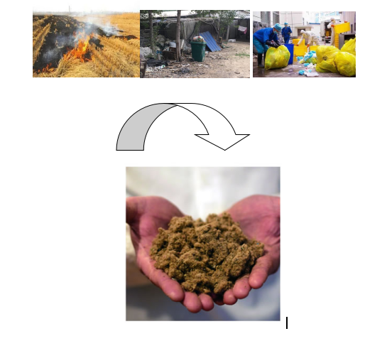 Agricultural waste disposal