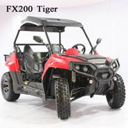 ODES 200utv for teenager and adult