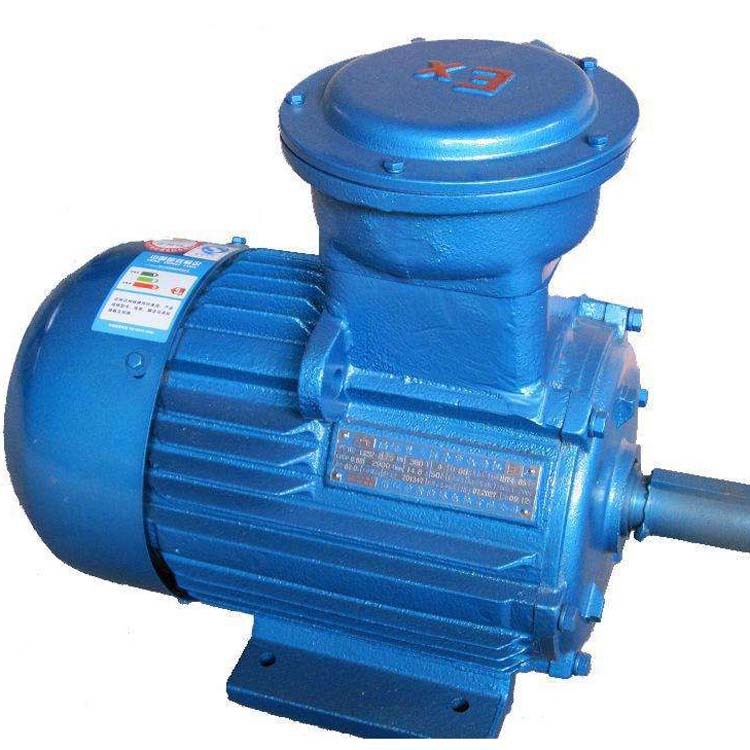 Environment-friendly dust explosion-proof motor can be customized vertical and horizontal flameproof