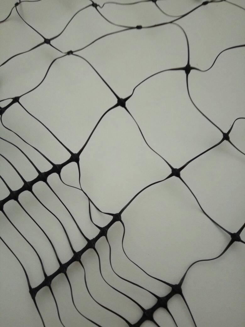 Bi-oriented net /plastic netting