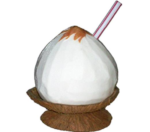 Coconut Waterball