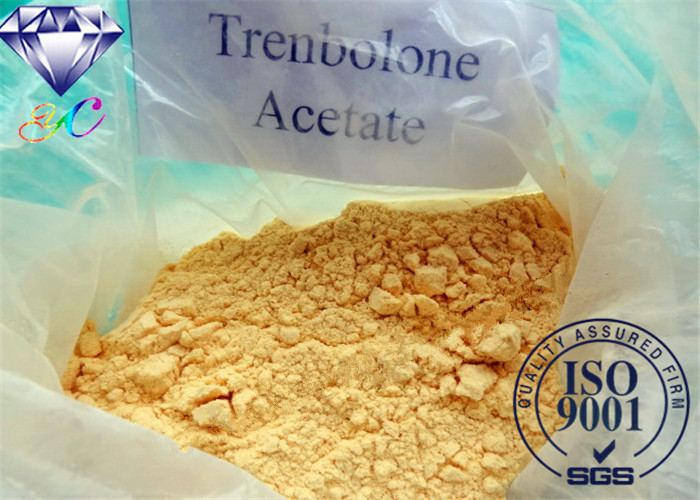 PharmaceuticalTrestolone Acetate CAS No. 6157-87-5 Prohormones Steriod 99% for Muscle Buliding