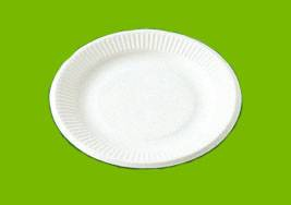 100% Biodegradable disposable bagasse tableware