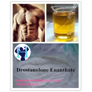 99% purity Anabolic Steroid Powder Drostanolone Enanthate Masteron Enanthate cas 472-61-145 Masteron