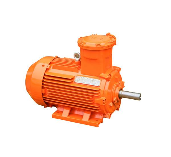 Low voltage ATEX motors