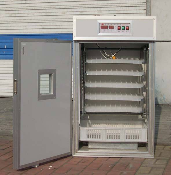 egg incubator for 440 eggs