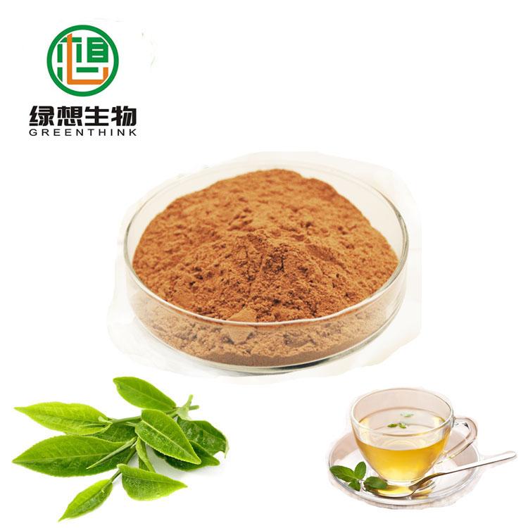 Hot selling Green Tea Extract Tea Powder polyphenol/ Catechin/EGCG