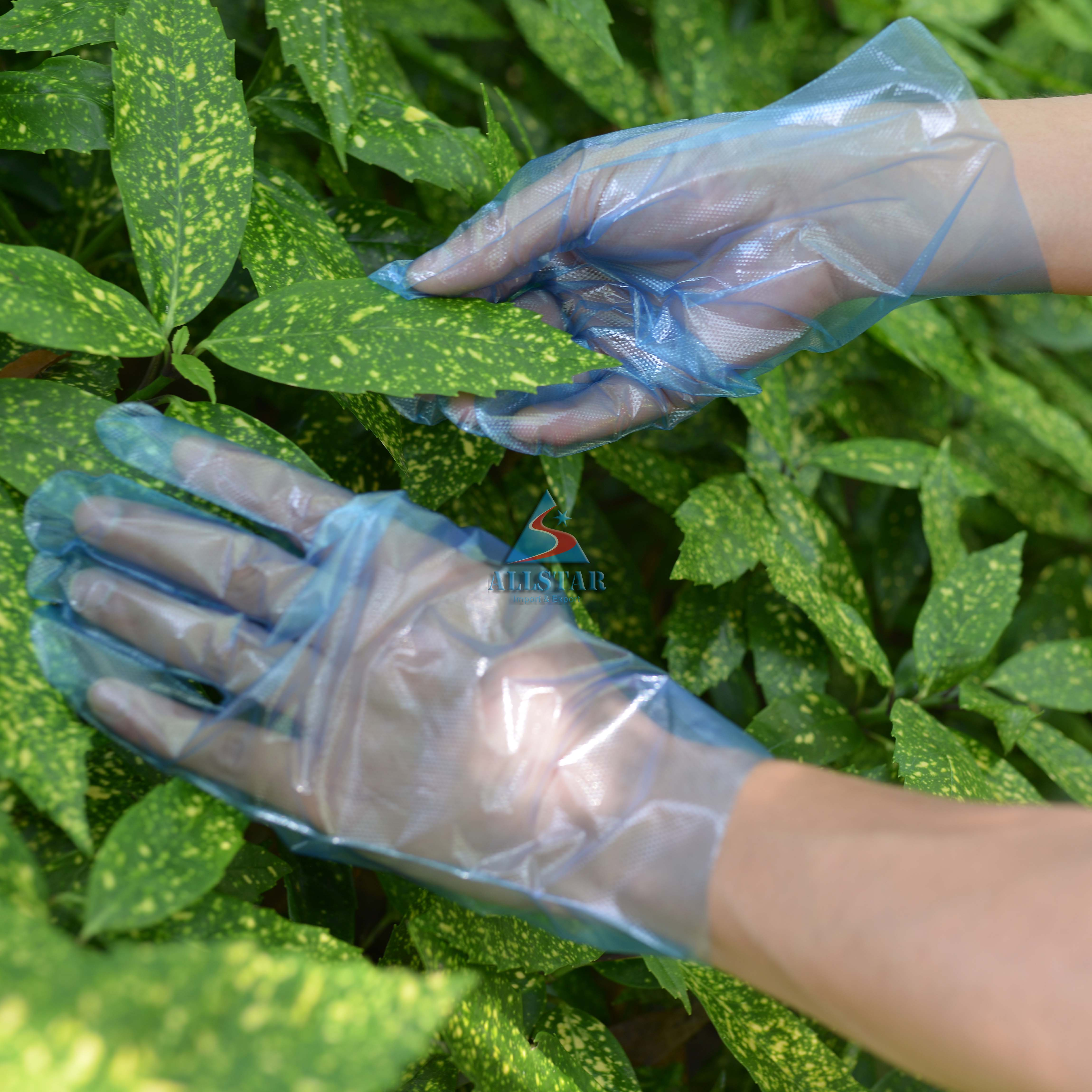 Hot Sale One Time Use Disposable FDA Approved LDPE Gloves