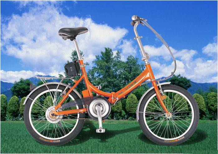 Electric Bicycle  2001B