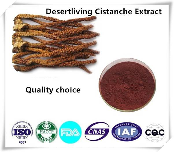 Desertliving Cistanche Extract 10:1 1kg/bag
