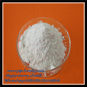 Pharmaceutical Intermediates 16-Alpha-Hydroxy Prednisolone 13951-70-7