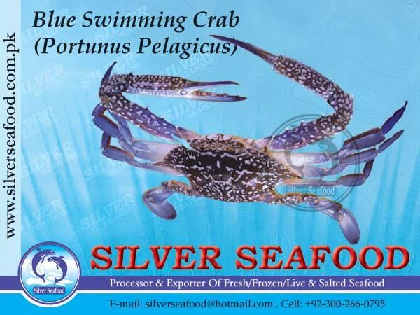 Blue Swimming Crab.Portunus Pelagicus