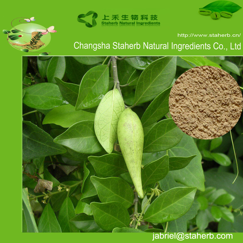 Gymnemic Acids 25% of Gymnema Sylvertre extract