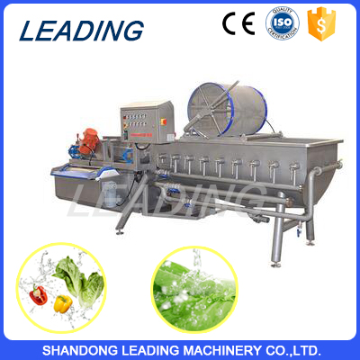 Automatic vegetable washer machine