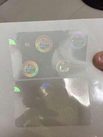 Florida overlay hologram