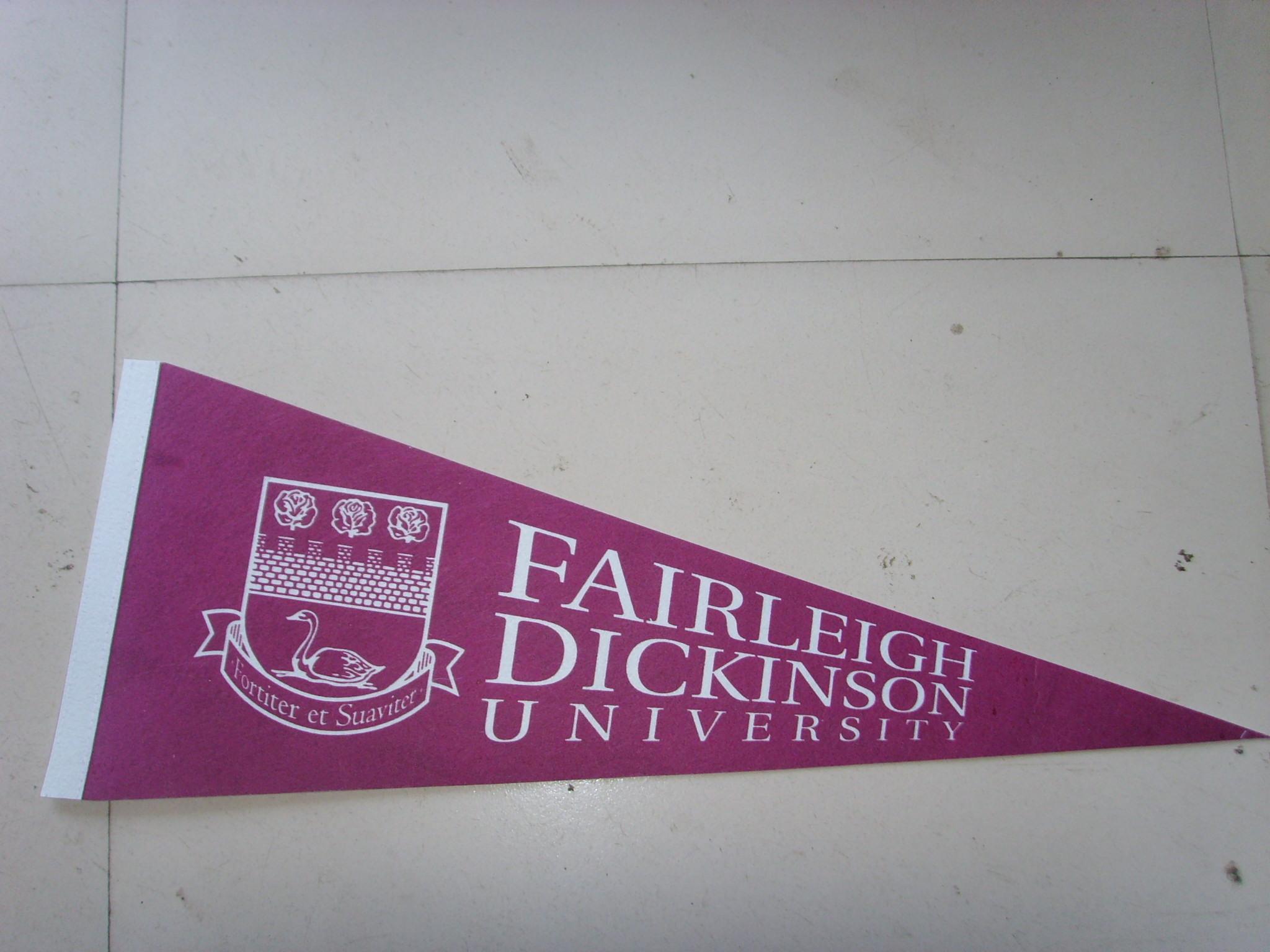 supply felt triangle flag felt pennant customized size and logo
