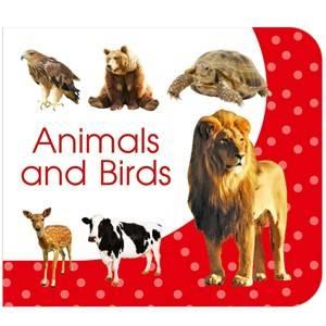 Animals & Birds
