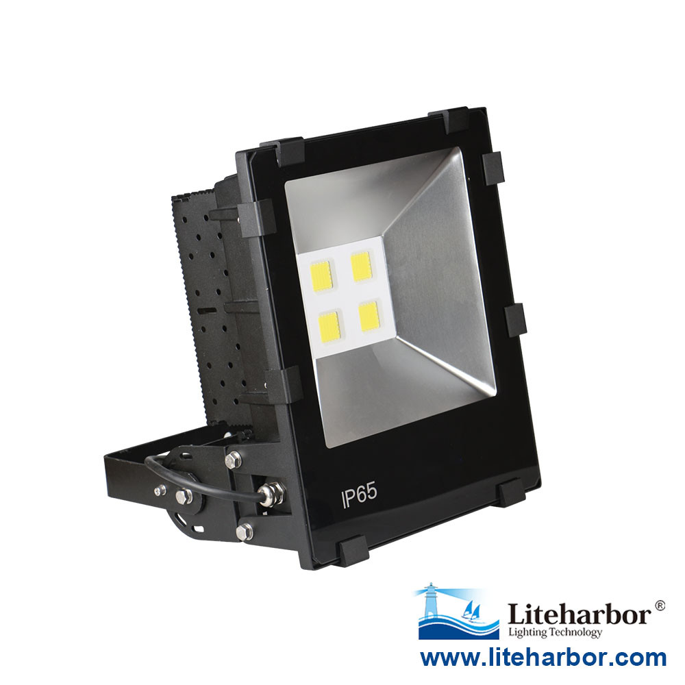 Led fixture Die Casting Aluminum Scale-Type Heat Sink LED Flood Light 160W