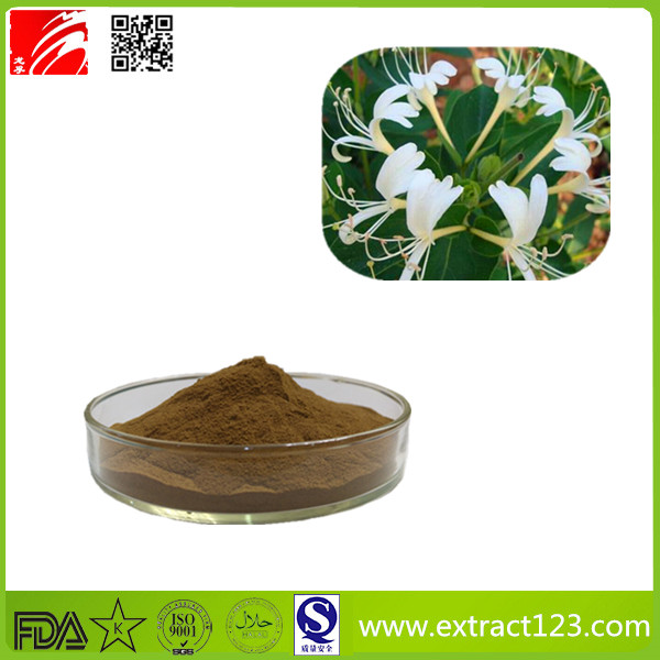 High Quality Johns Wort Extract Powder