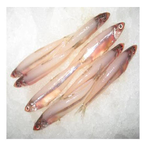 Dry anchovy-fish head less